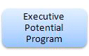 Executive Potential Program